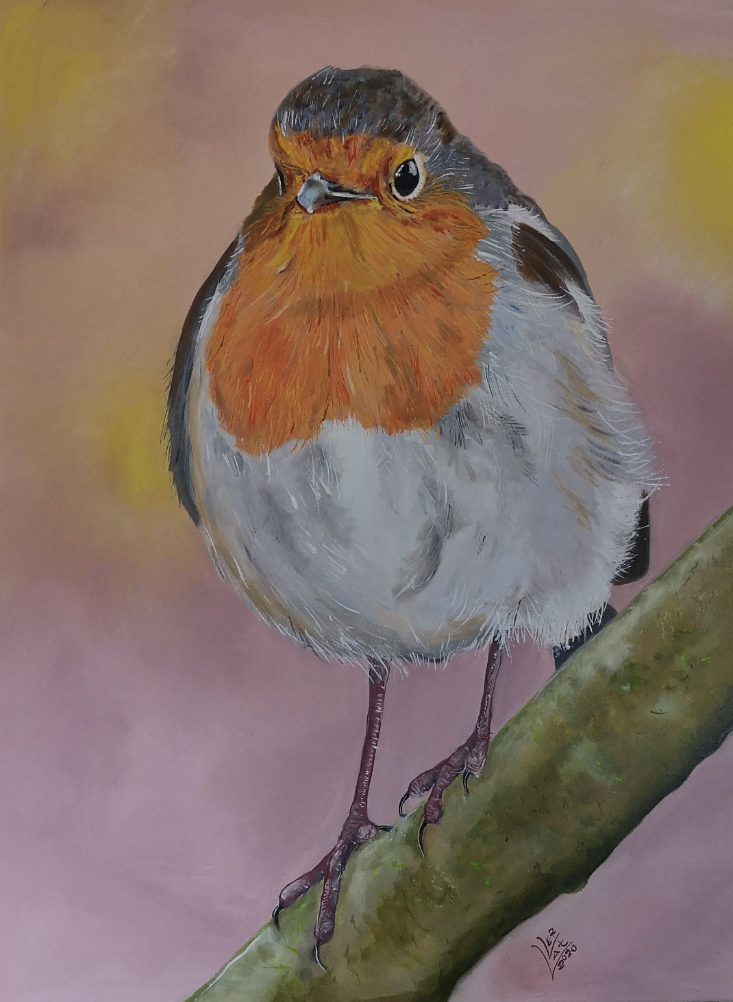 "Giant robin ""Morning dawn""60x80 cm"