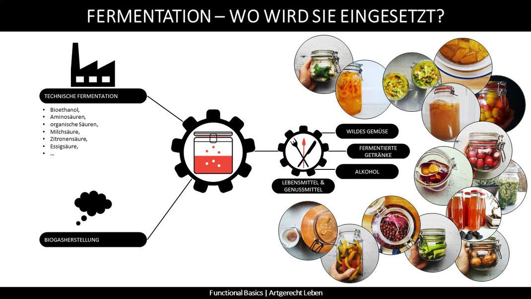 Wo wird Fermentation eingesetzt?