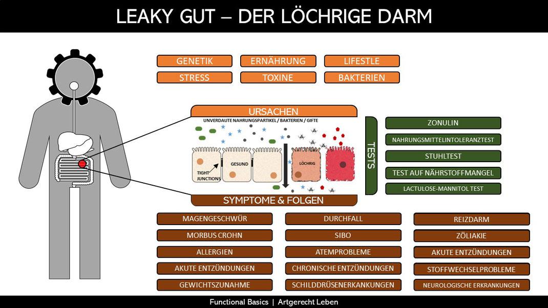 Leaky Gut Syndrome Ursachen, Symptome, Folgen & Tests