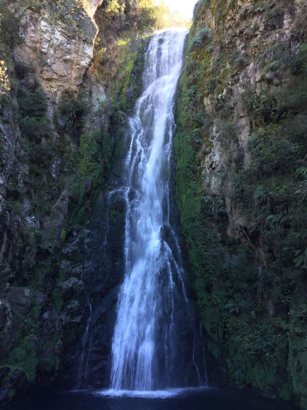 Dom Rep, Dominikanische Republik, Berge, Gebirge, Jarabacoa, Wasserfall, Salto de Baiguate