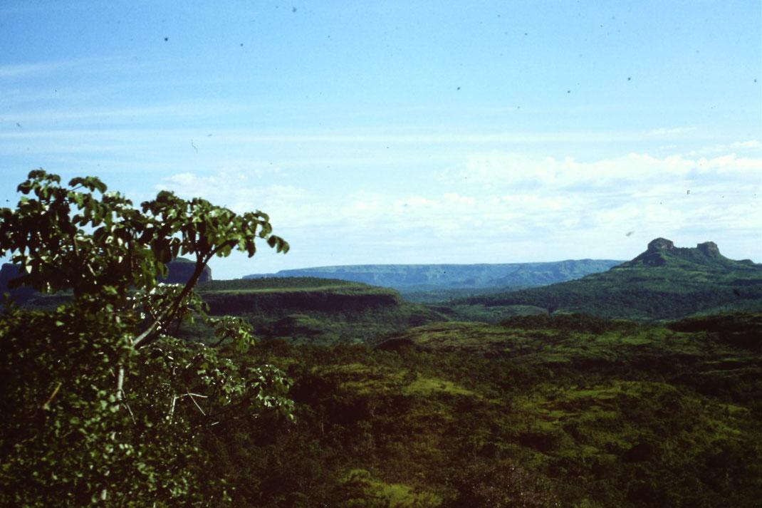 Brasil, Brasilien, Mato Grosso, Cuiaba