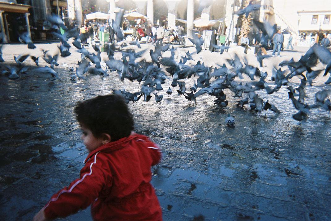Shourouk al Shahaf, Damaskus