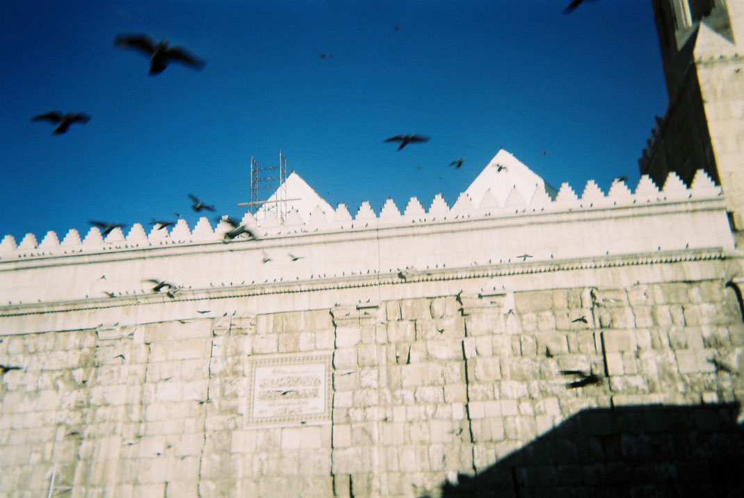 Bassel al Shehabi, Damaskus