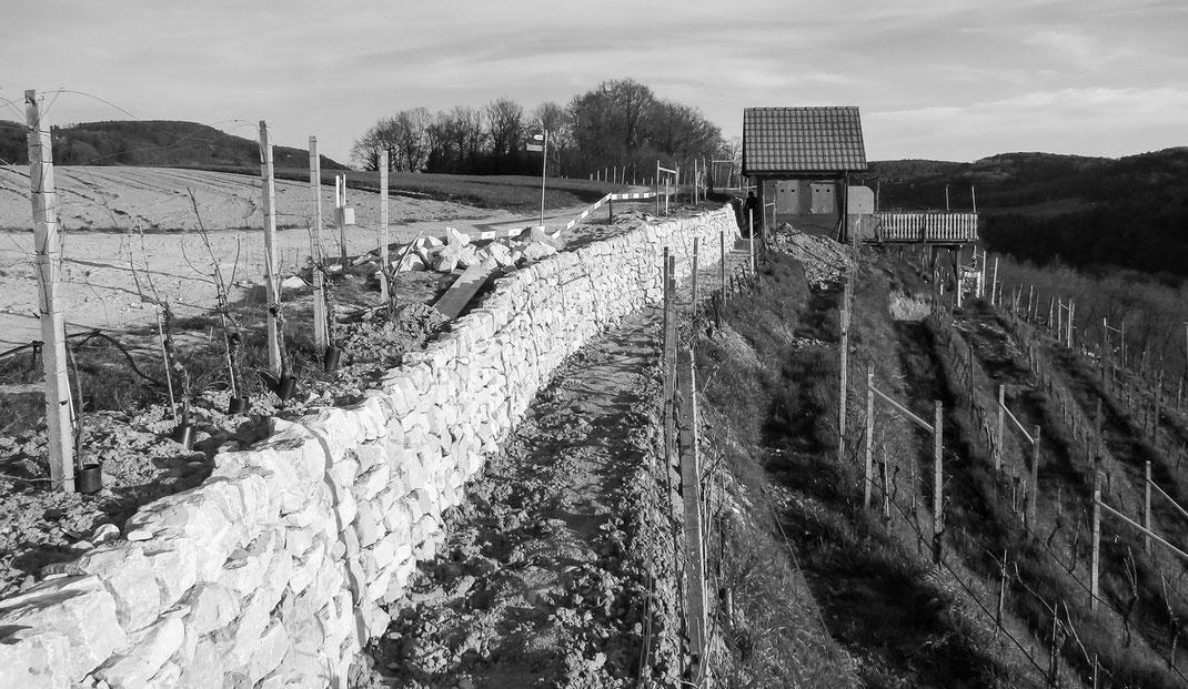 Abschluss der Arbeiten an der Trockenmauer (Foto: A. Reich)