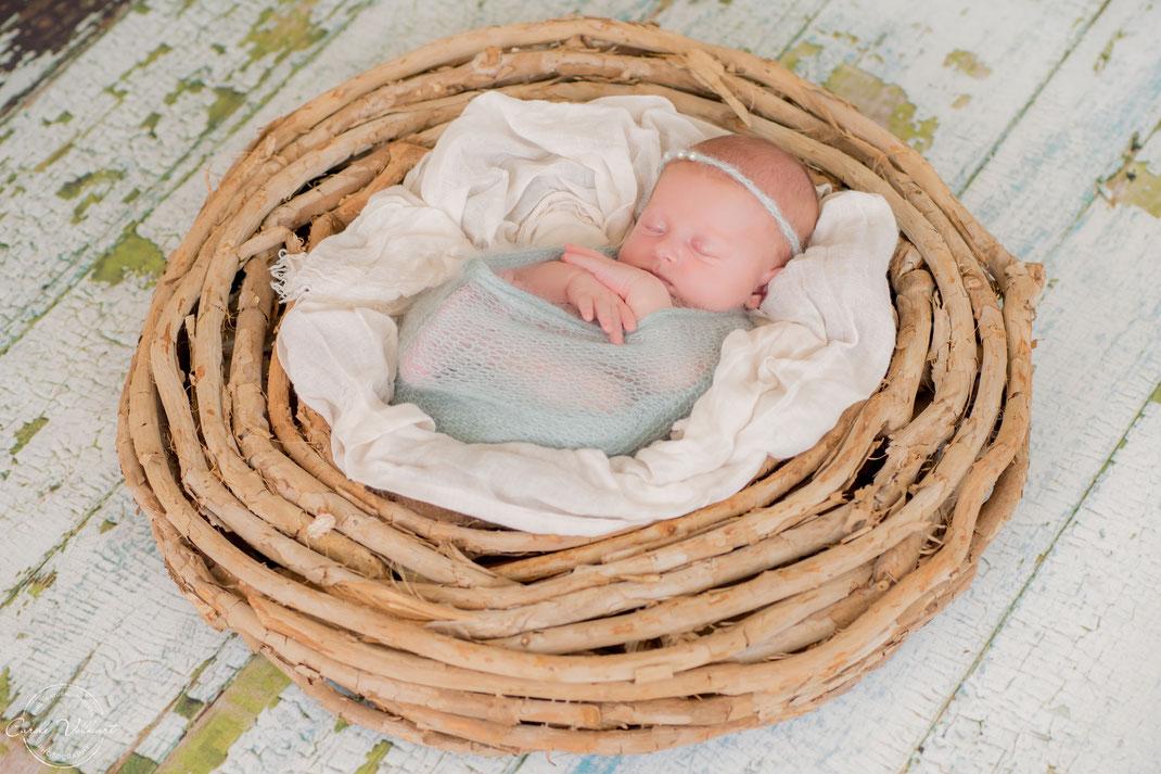 Newborn Fotoshooting, Neugeborenenfotografie, Babyshooting