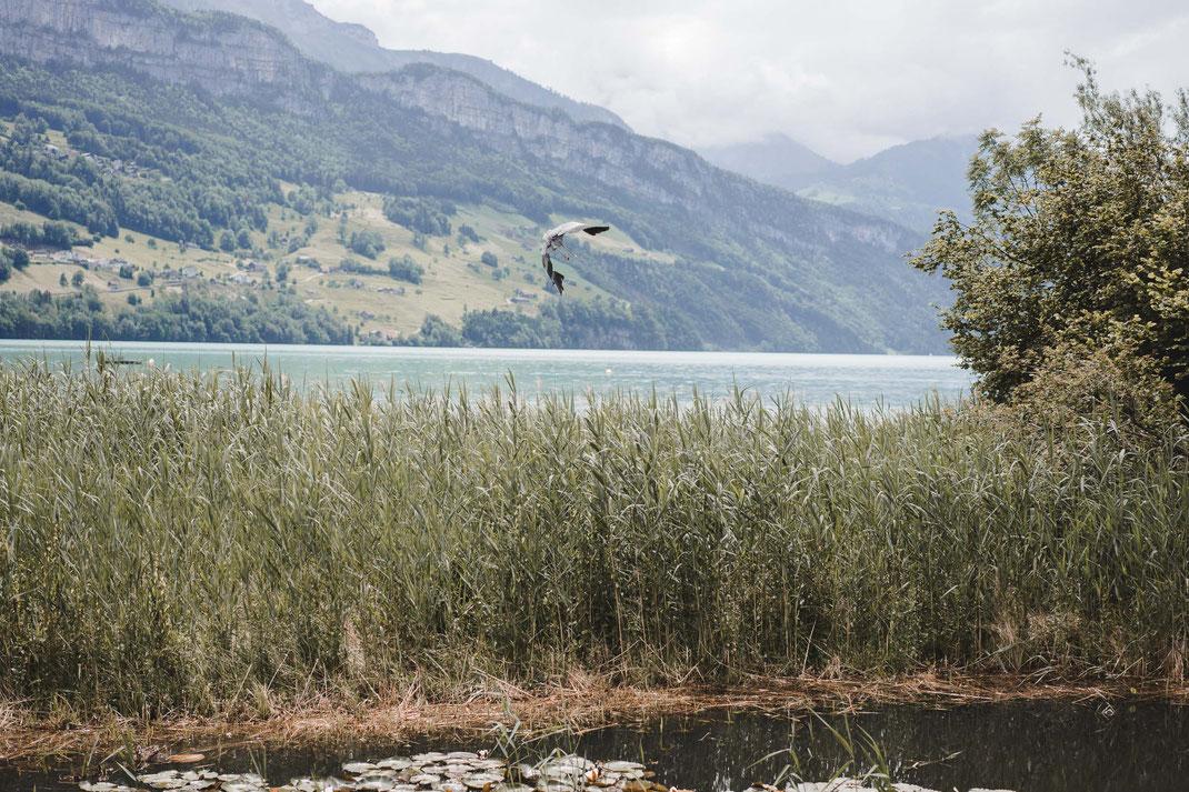 Brunnen mit Sicht auf Seelisberg