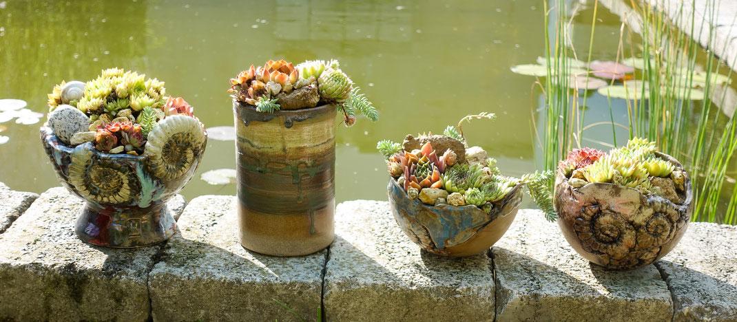 Ammoniten-Keramikgefäße bei formalen Fischteich