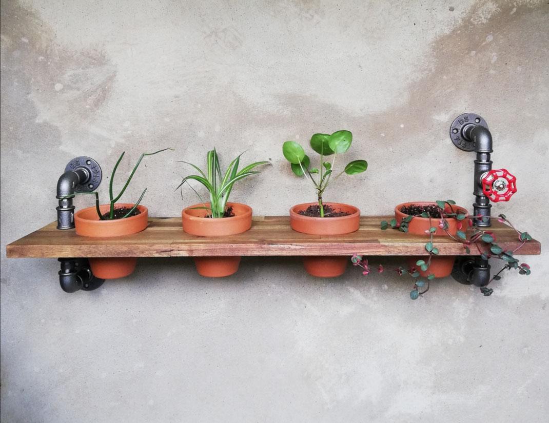 Vintage Blumentopfhalter Wandregal Urban Jungle Pflanzendisplay Display für Pflanzen Wandregal aus Rohren im Industrial Style