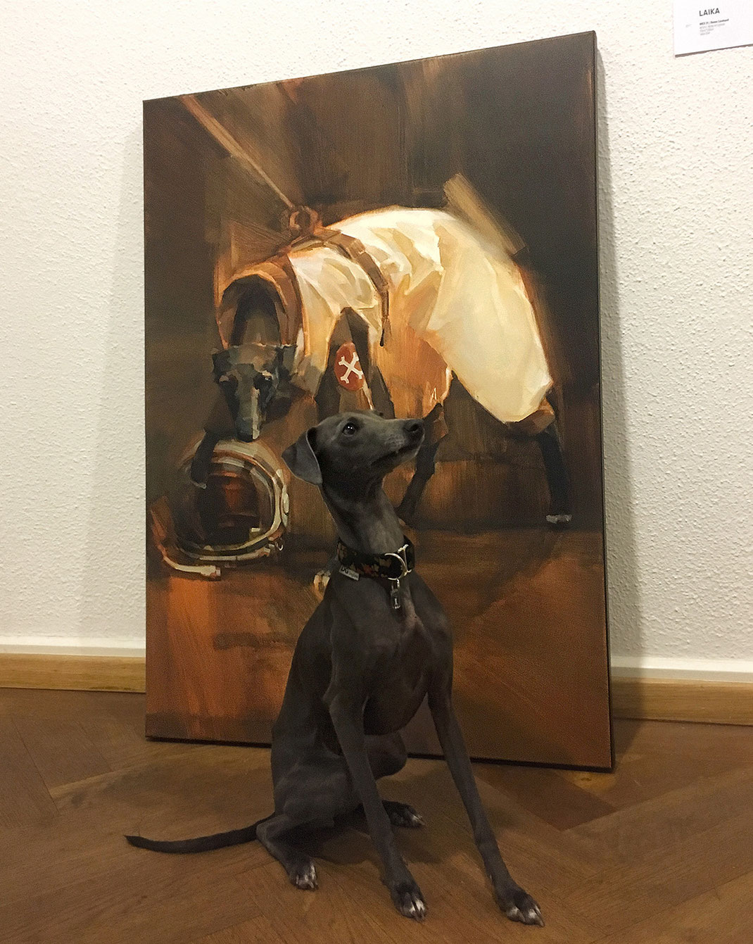 """LAIKA"" Wes21 Schwarzmaler / Remo Lienhard painting on canvas"