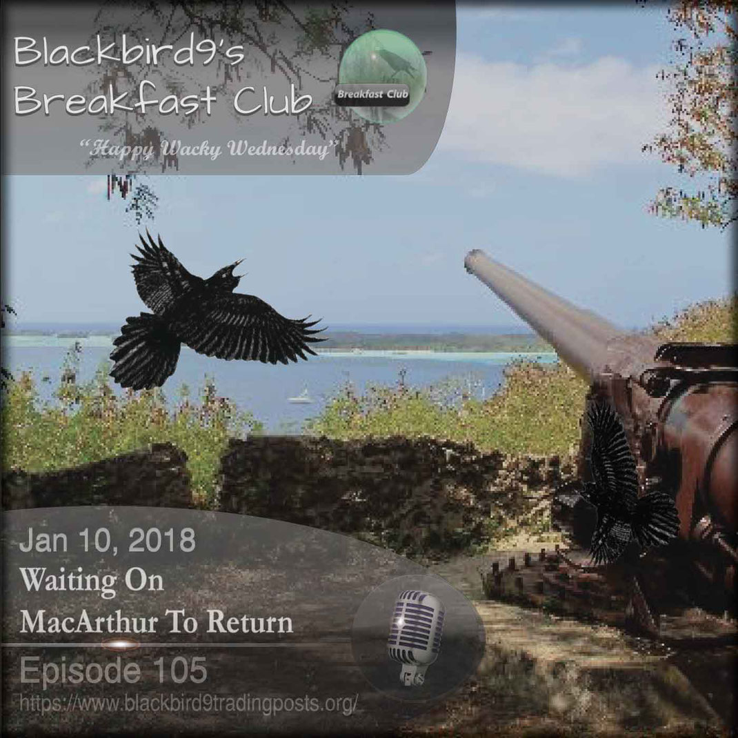 Waiting On MacArthur To Return - Blackbird9