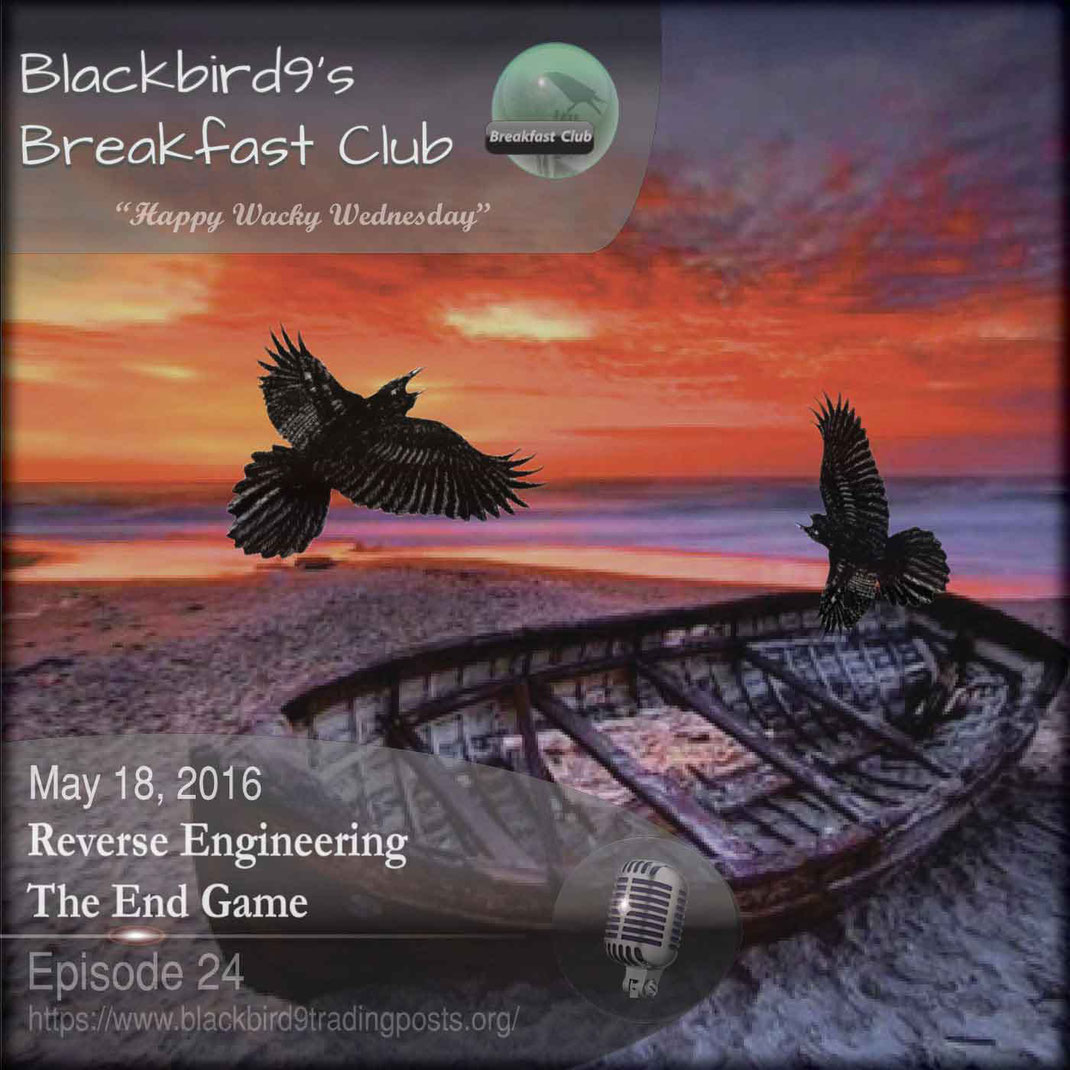 Reverse Engineering The End Game - Blackbird9