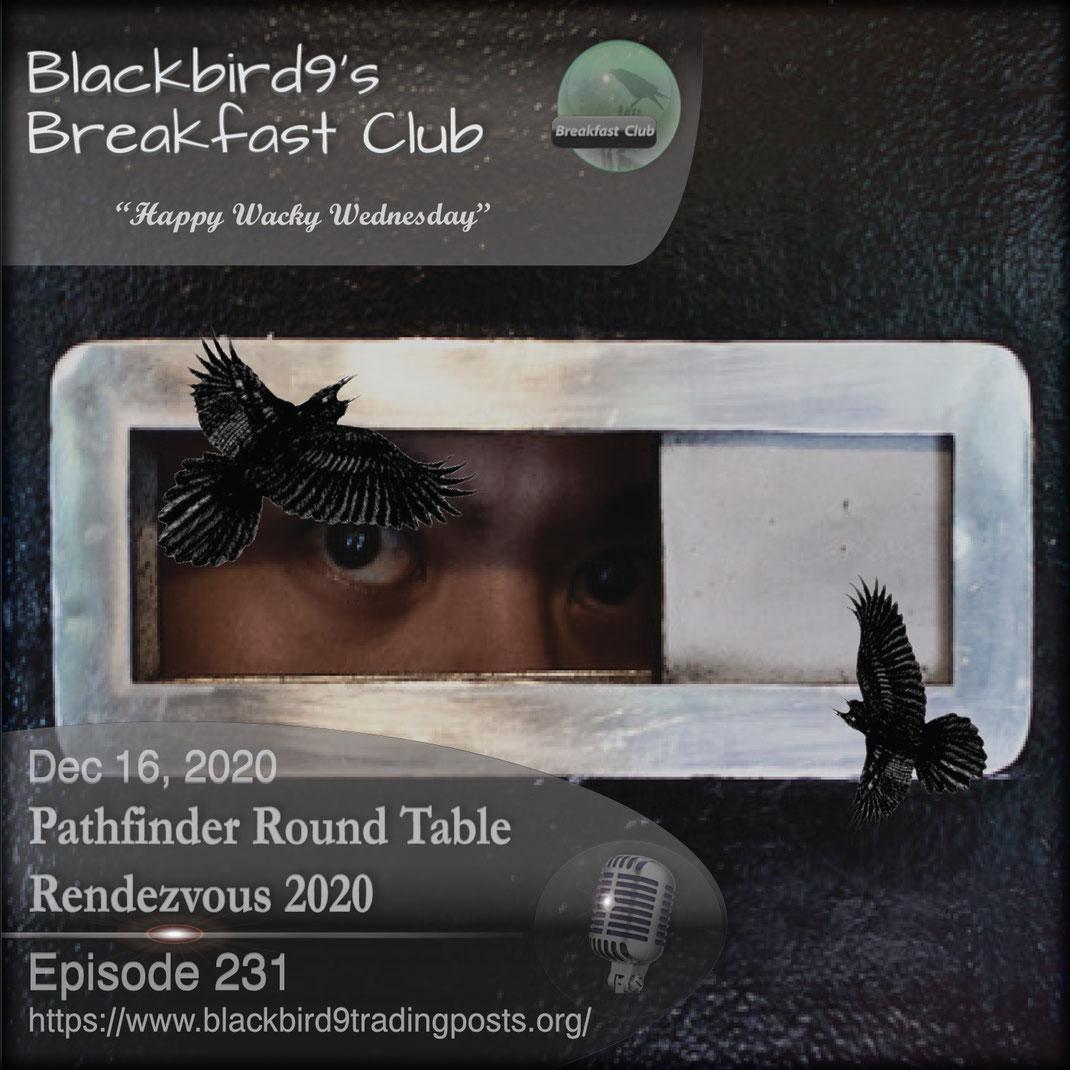 Pathfinder Round Table Rendezvous 2020 - Blackbird9