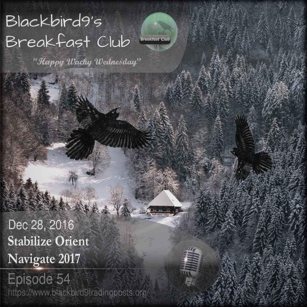 Stabilize Orient Navigate 2017 - Blackbird9 Podcast