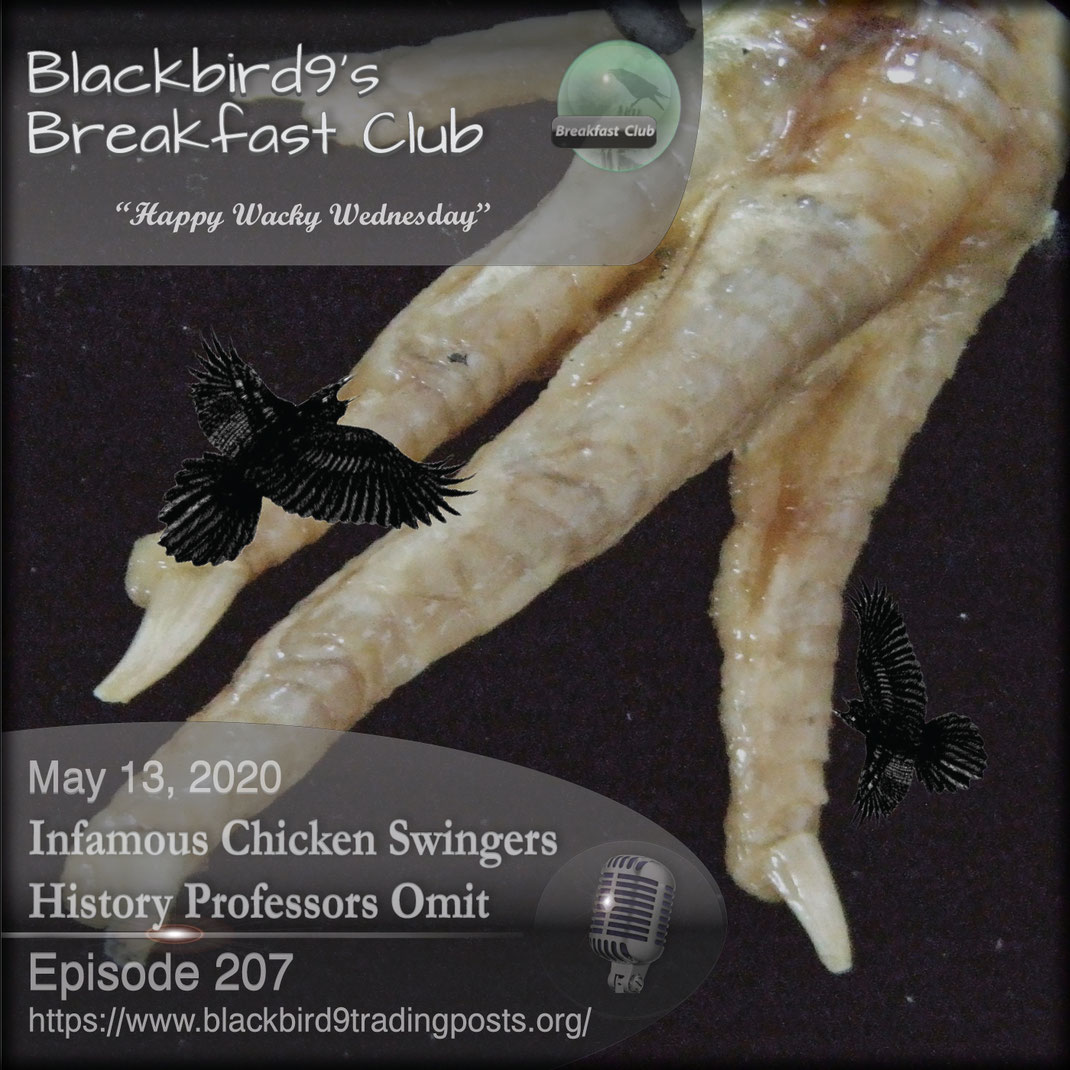 Infamous Chicken Swingers History Professors Omit - Blackbird9