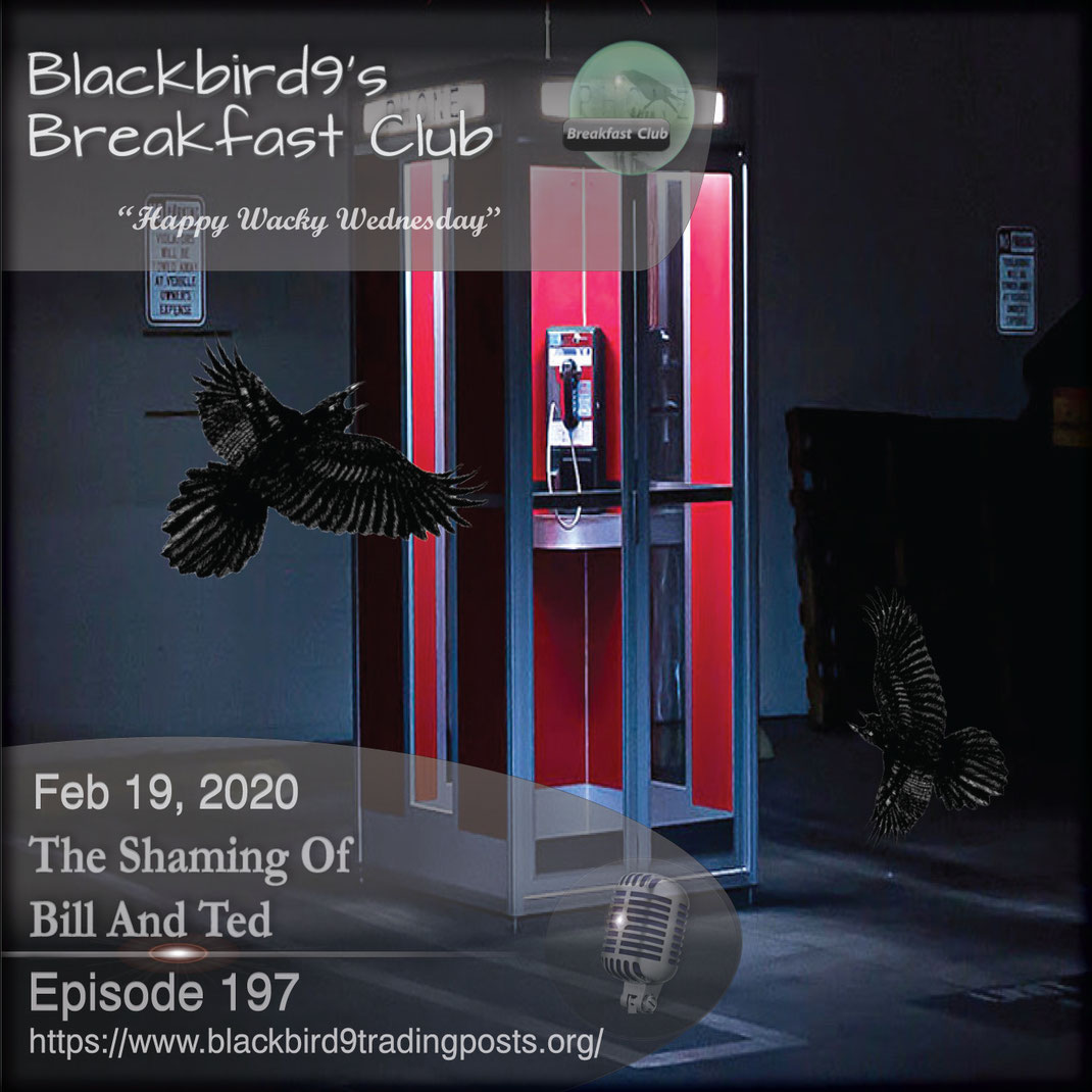 The Shaming Of Bill And Ted -  Blackbird9