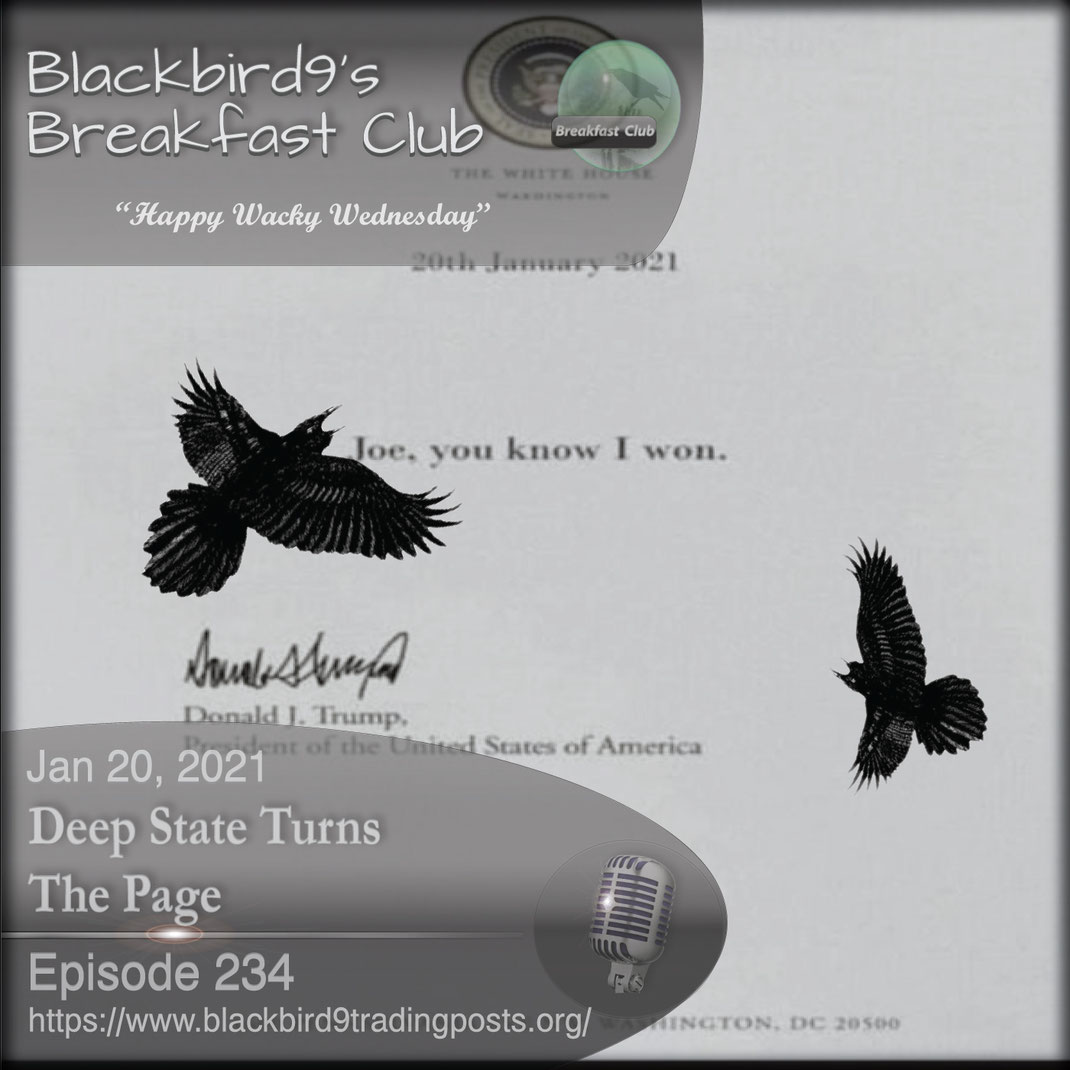 Deep State Turns The Page - Blackbird9