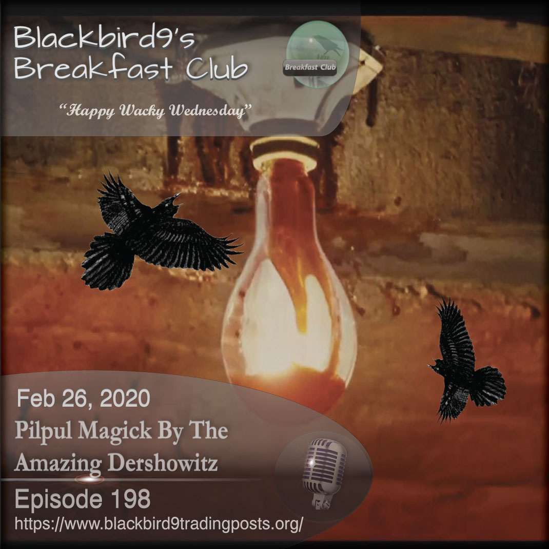 Pilpul Magick By The Amazing Dershowit -  Blackbird9