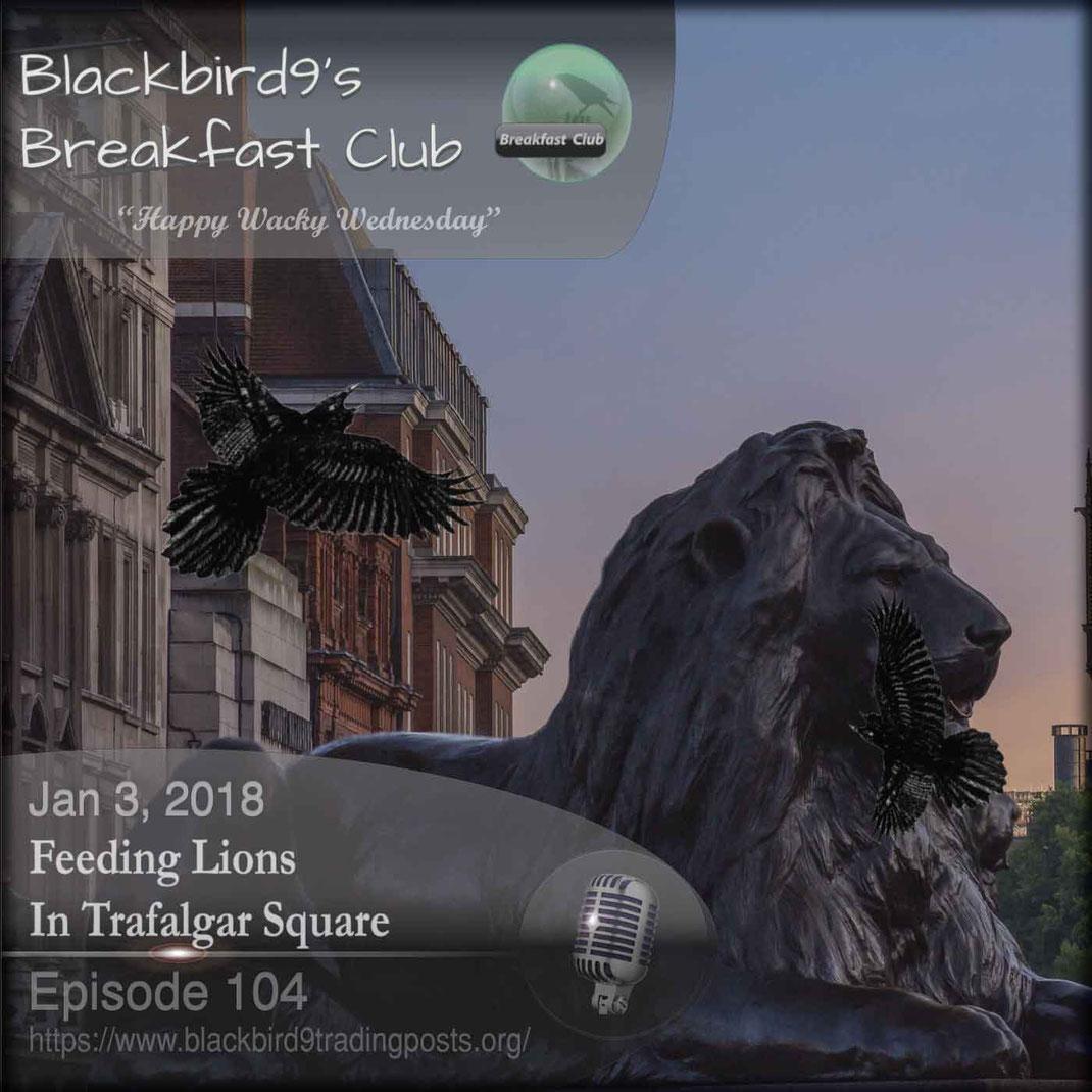 Feeding Lions In Trafalgar Square - Blackbird9