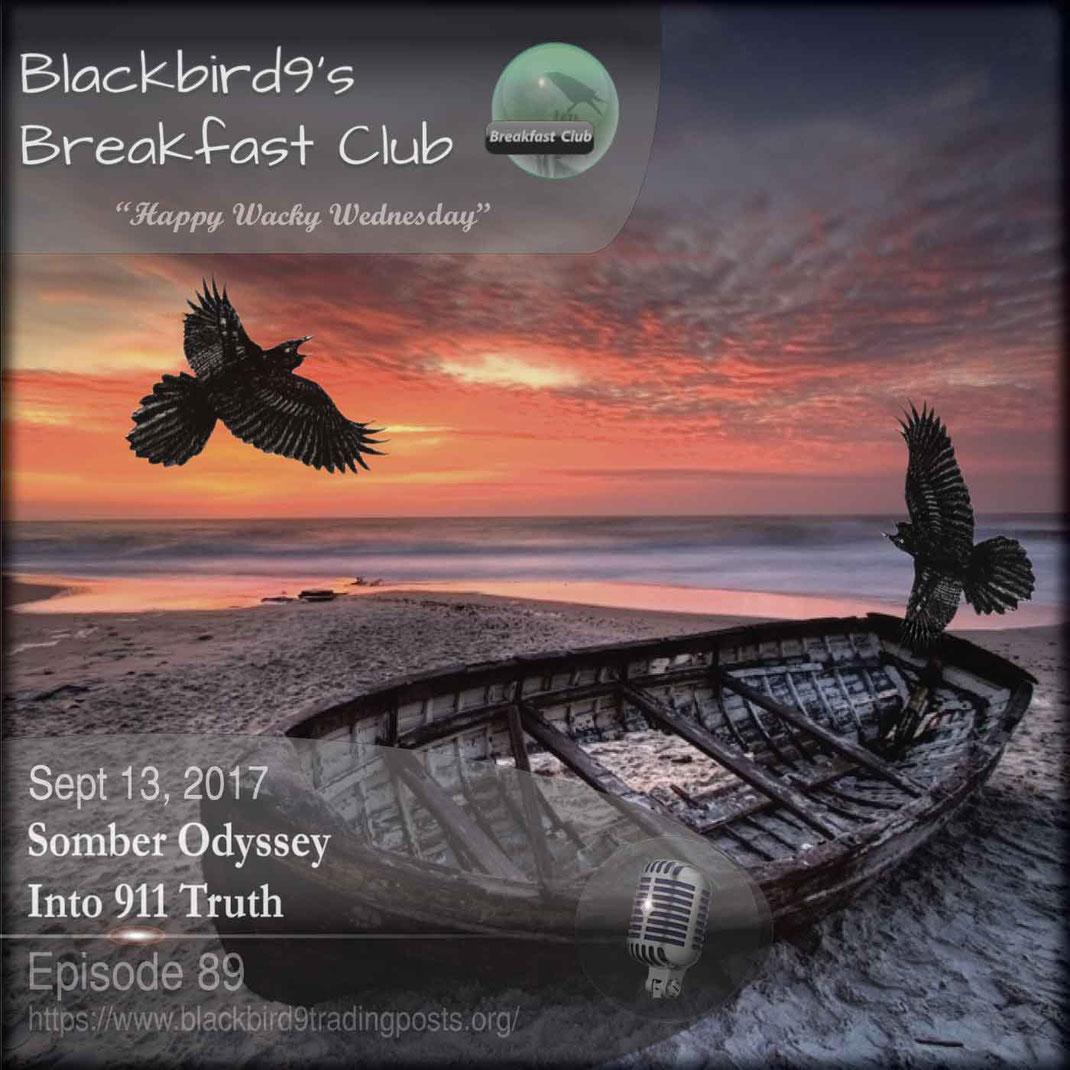Somber Odyssey Into 911 Truth - Blackbird9