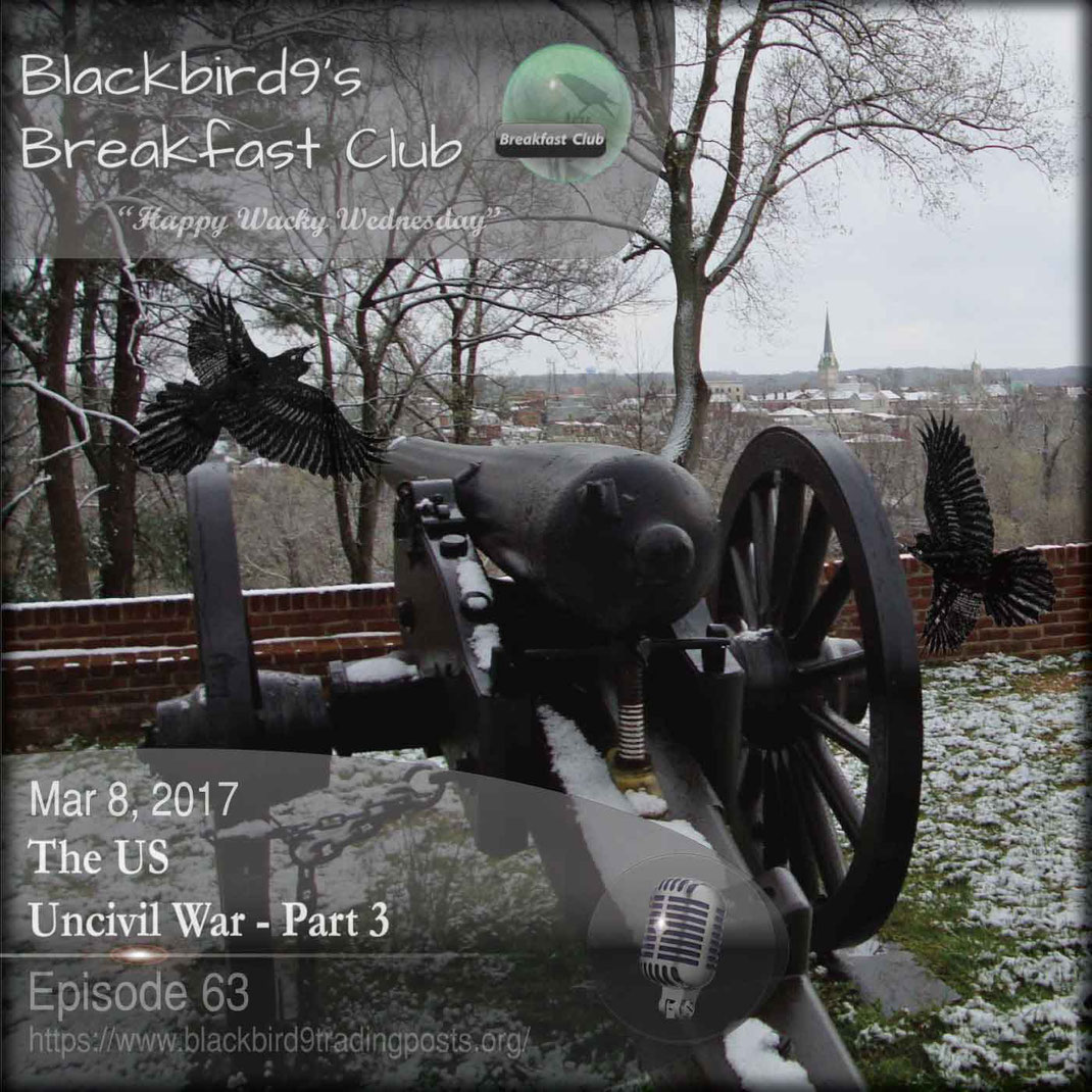 The US Uncivil War Part 3 - Blackbird9