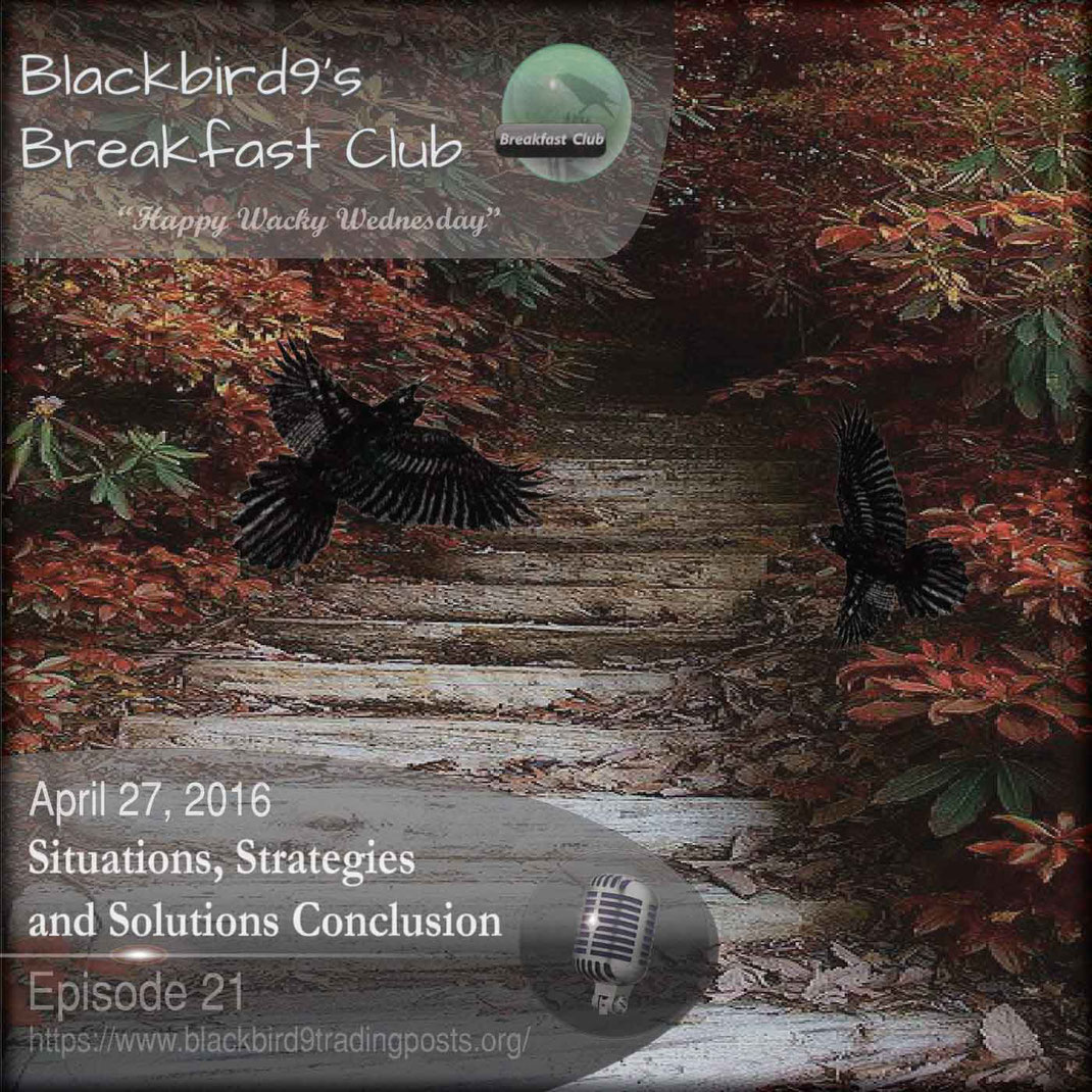 Situations, Strategies and Solutions Conclusion - Blackbird9