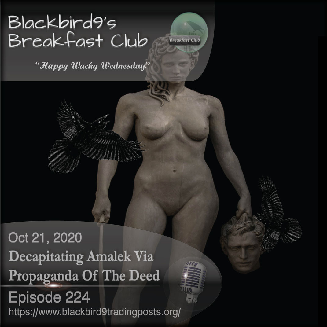 Decapitating Amalek via Propaganda Of The Deed - Blackbird9