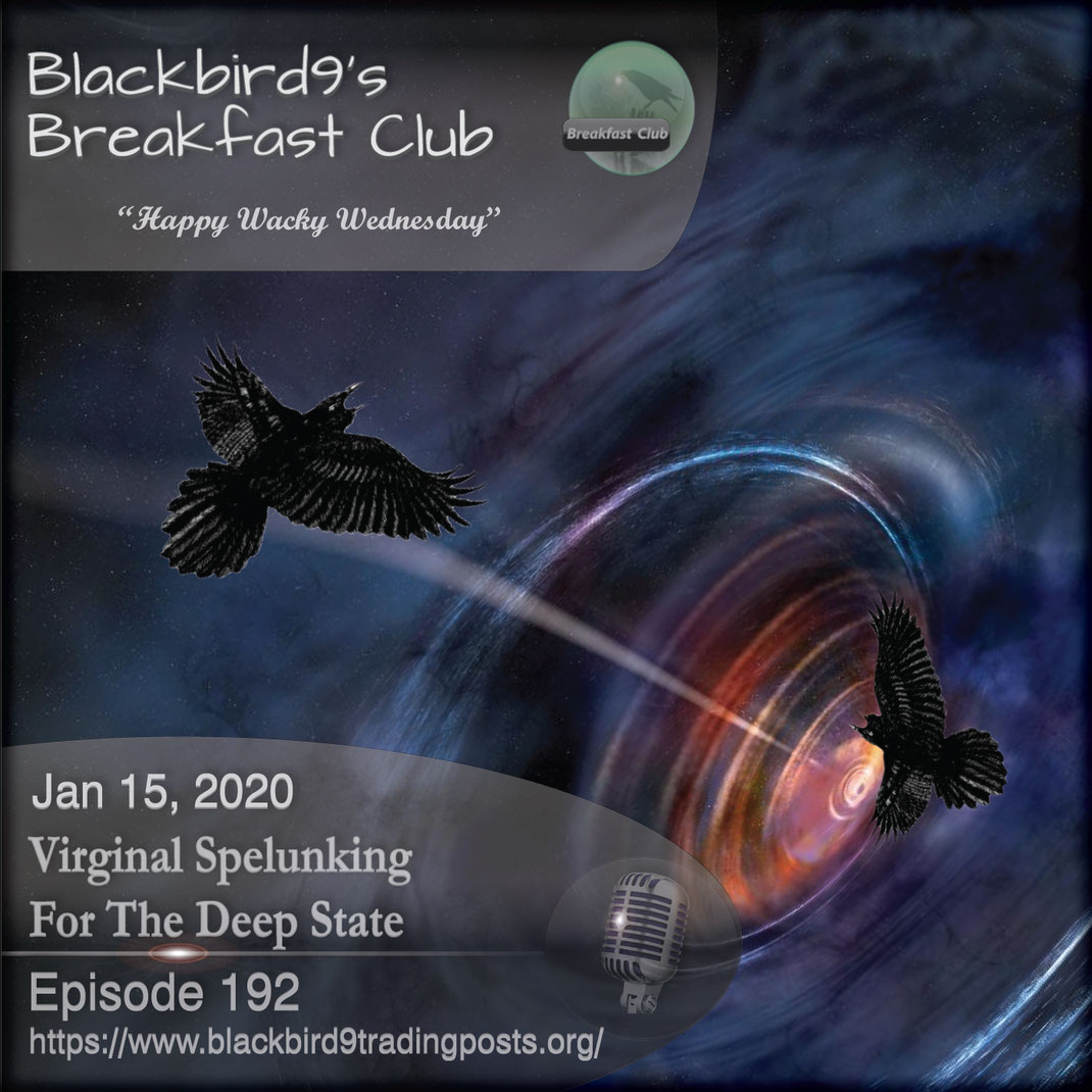 Virginal Spelunking For The Deep State - Blackbird9