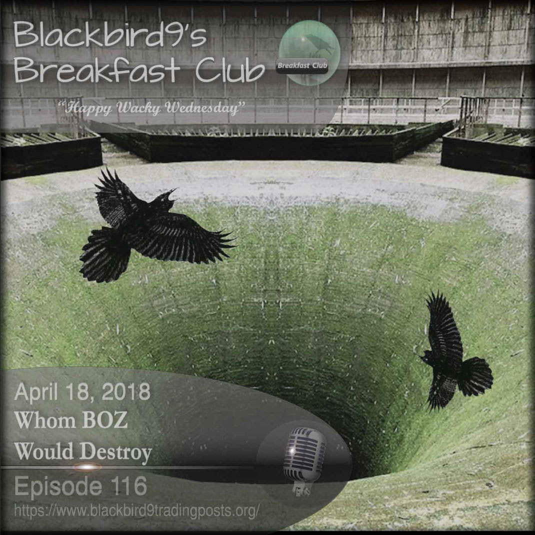 Whom BOZ Would Destroy - Blackbird9