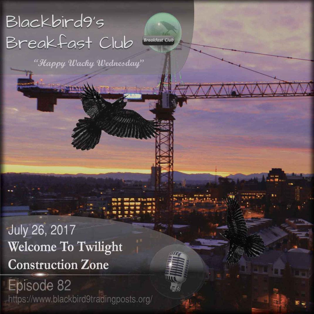 Welcome To Twilight Construction Zone  Blackbird9