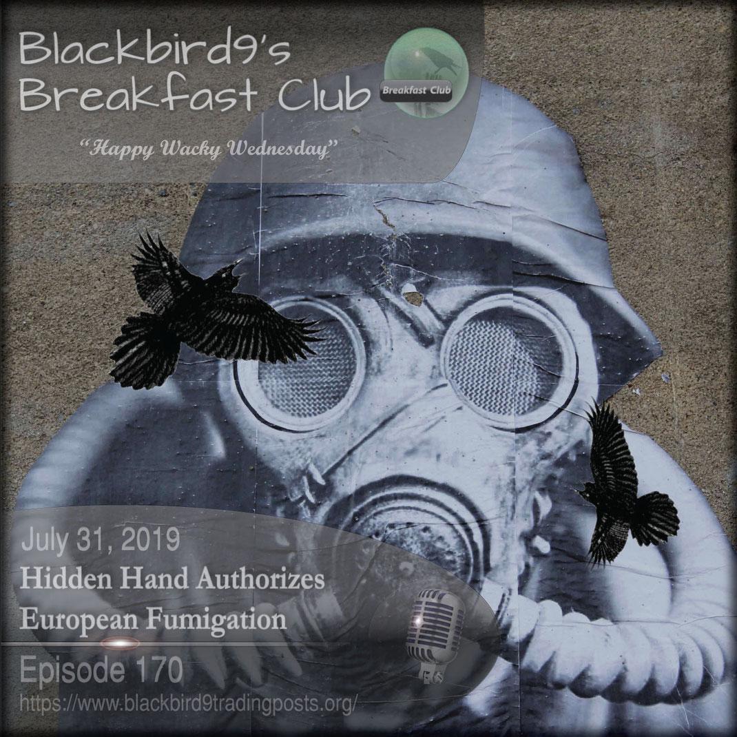 Hidden Hand Authorizes European Fumigation - Blackbird9