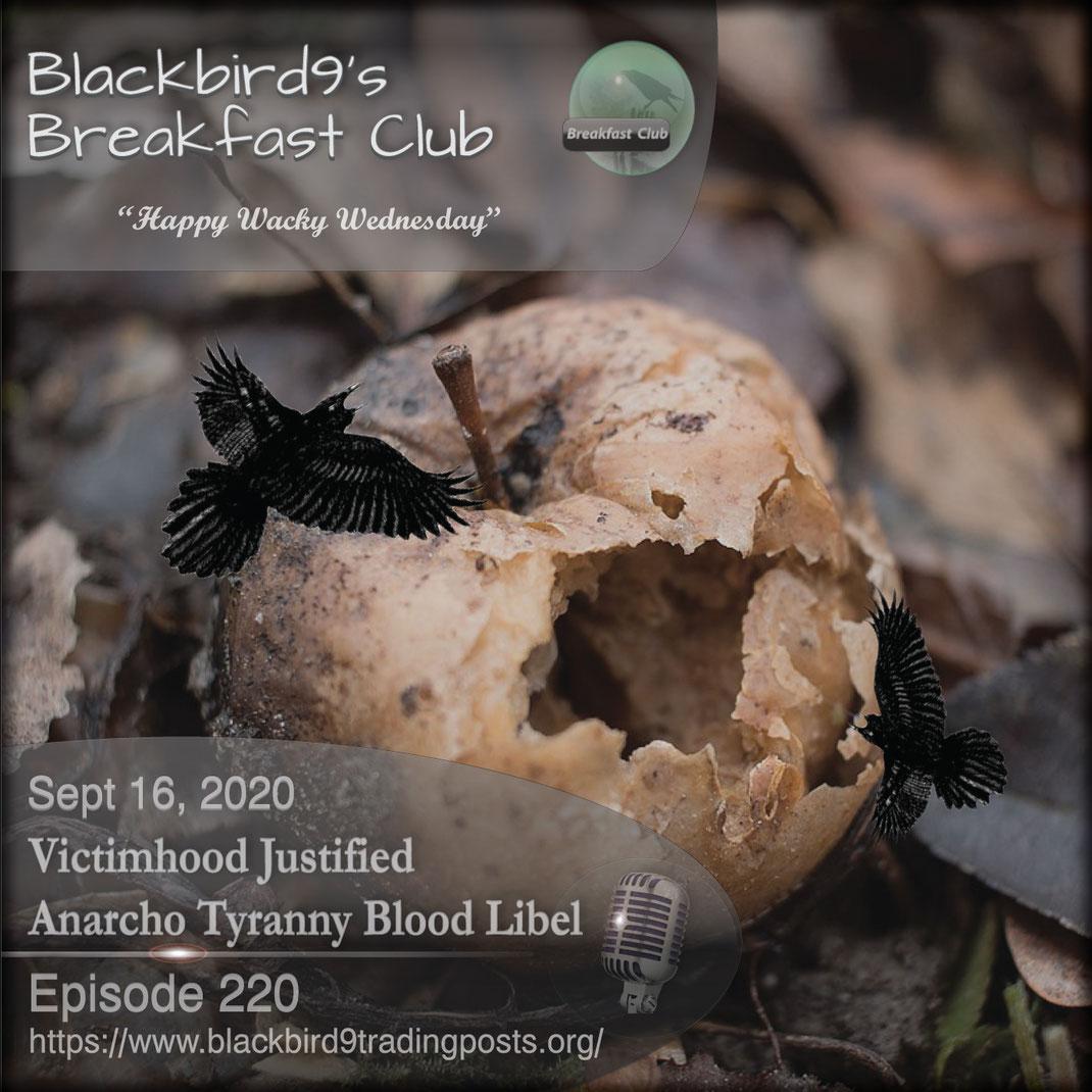Victimhood Justified Anarcho Tyranny Blood Libel - Blackbird9