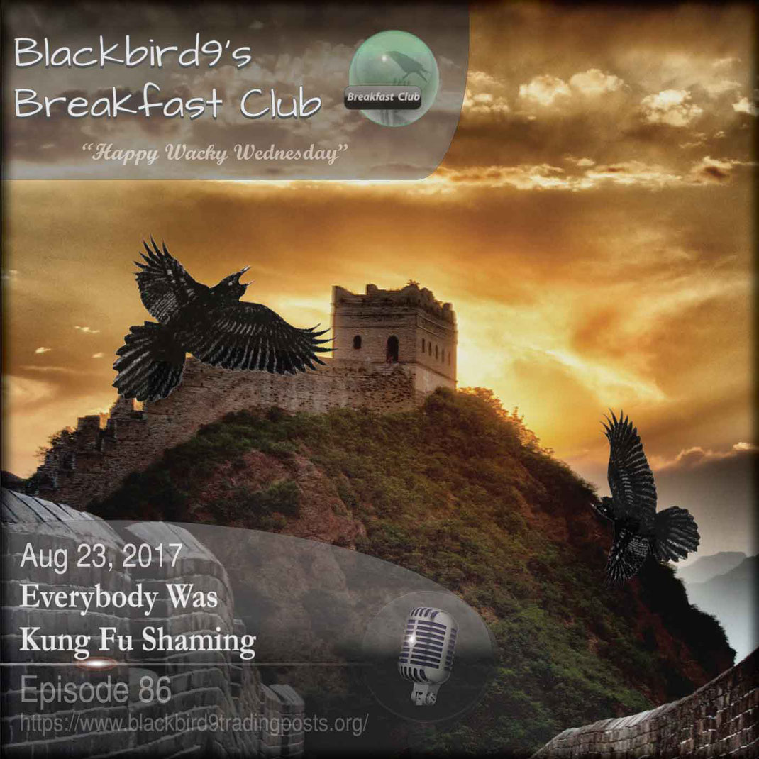 Everybody Was Kung Fu Shaming - Blackbird9