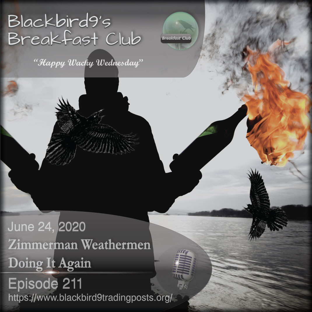 Zimmerman Weathermen Doing It Again - Blackbird9
