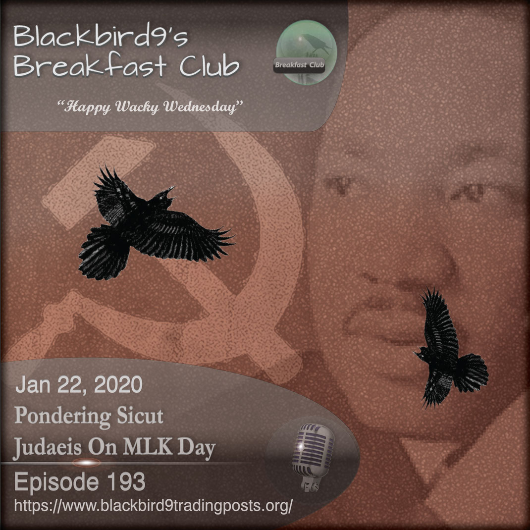 Pondering Sicut Judaeis On MLK Day - Blackbird9