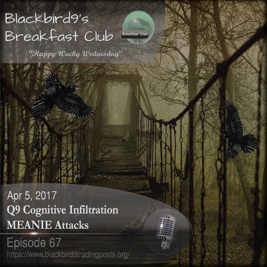 Q9 Cognitive Infiltration MEANIE Attacks  - Blackbird9