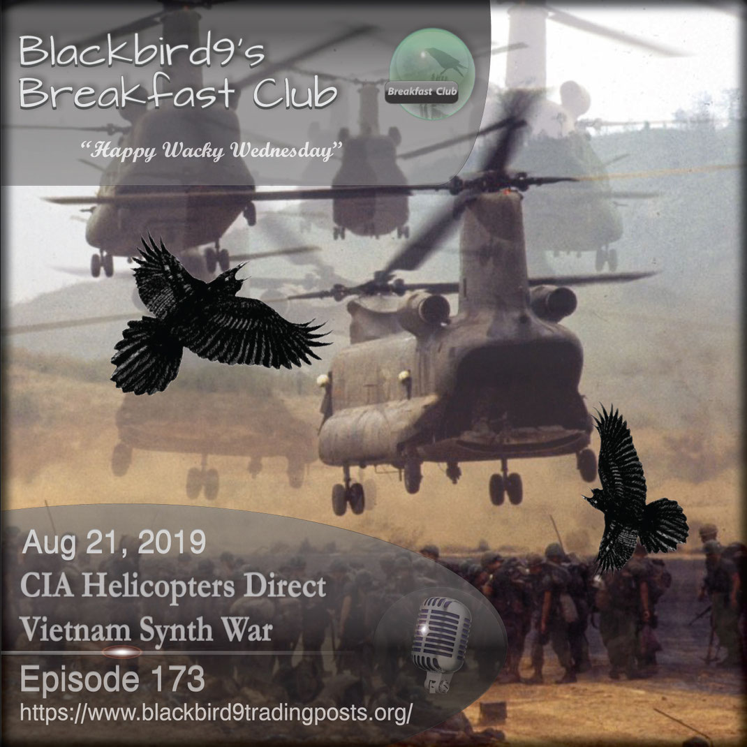 CIA Helicopters Direct Vietnam Synth War - Blackbird9