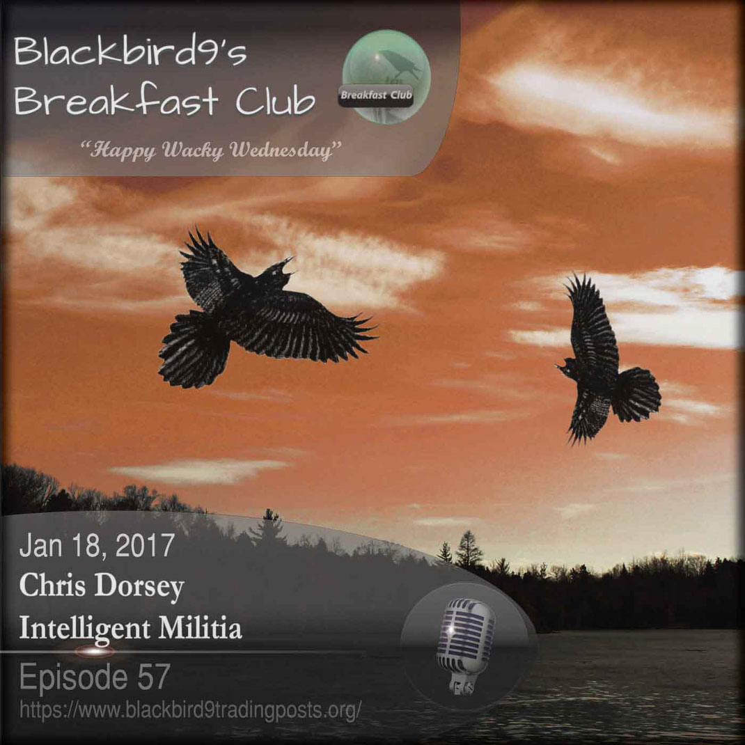 Chris Dorsey's Intelligent Militia - Blackbird9