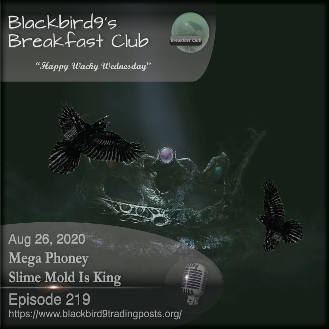 Mega Phoney Slime Mold Is King  - Blackbird9