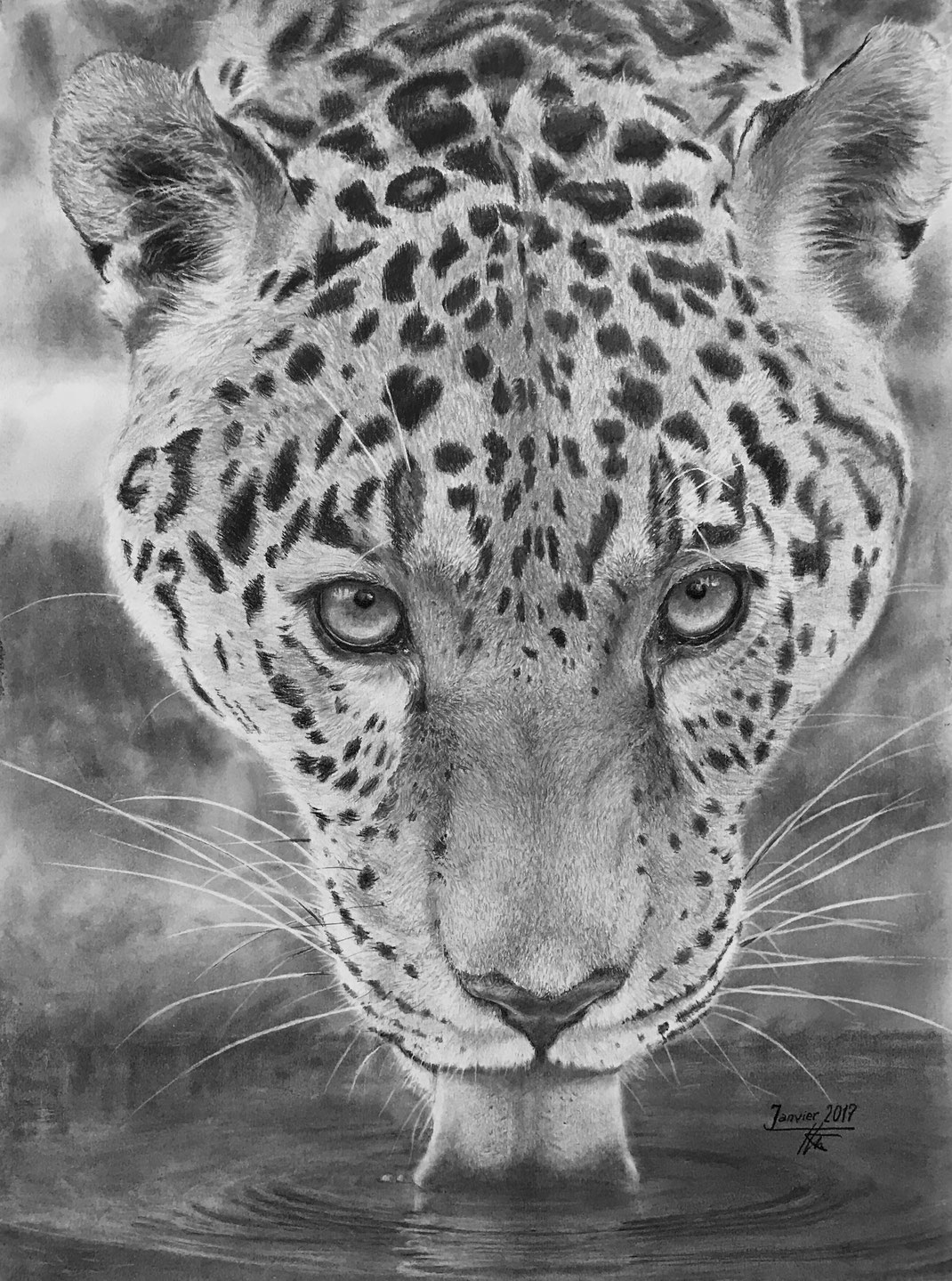 Soif de jaguar