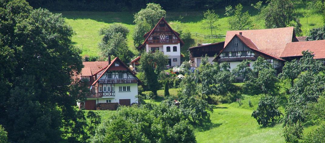 Panorama-Ausblick aus der Ferienwohnung, Schwarzwald-Häuser im Fachwerkstil, Idylle