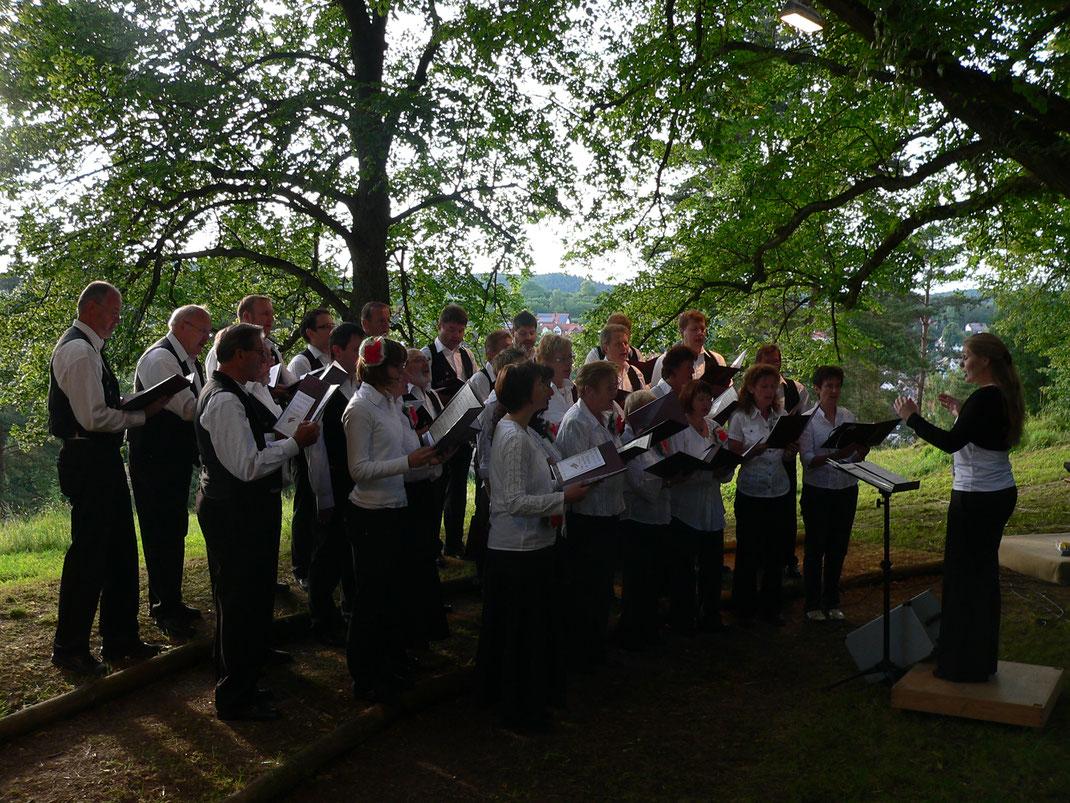 2009 Serenade unter den Linden