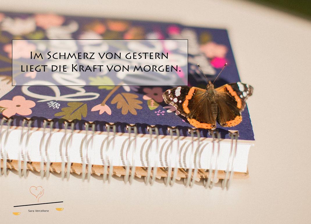 Ganzheitliche Psychosoziale Beratung Sara Vercellone - Blog Die Schmetterlingsgeburt