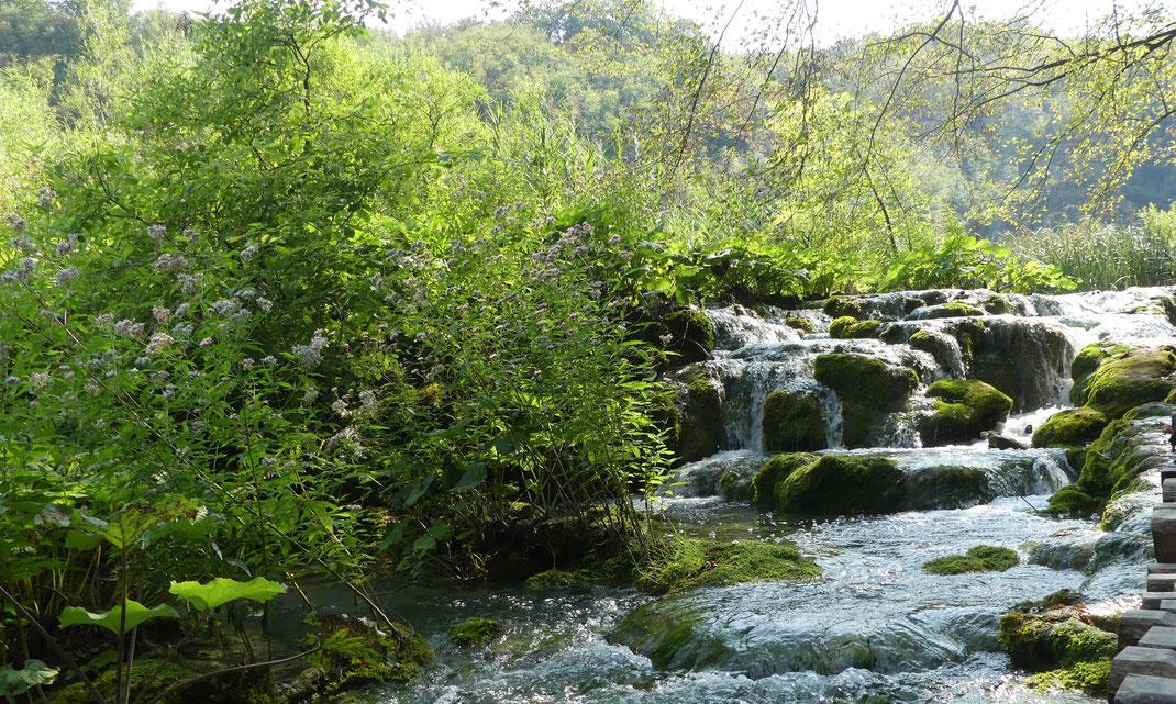 Les lacs de Plitvice, Croatie.