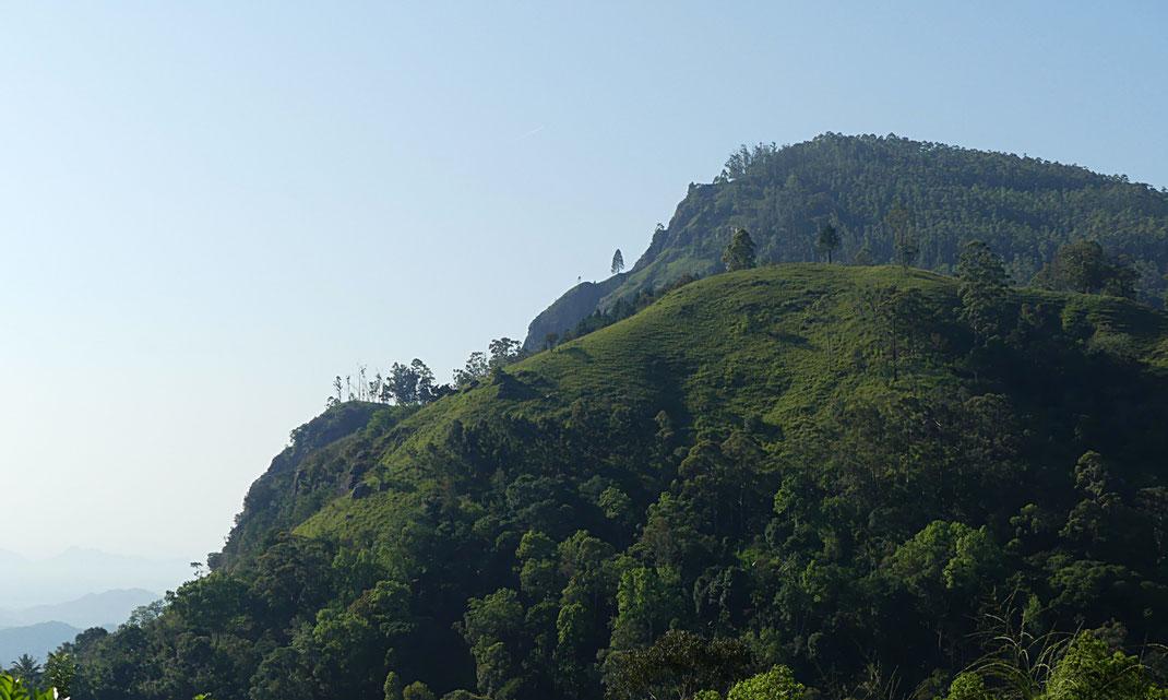 La vue depuis l'hôtel Paraiso
