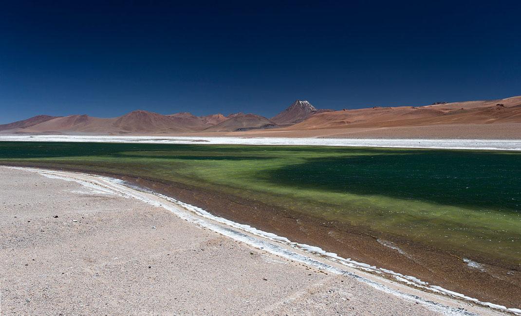 Rierva los flamencos laguna with green color and vulcan and blue sky in the back, San Pedro de Atacama, Altiplano, Chile, 1280x777px