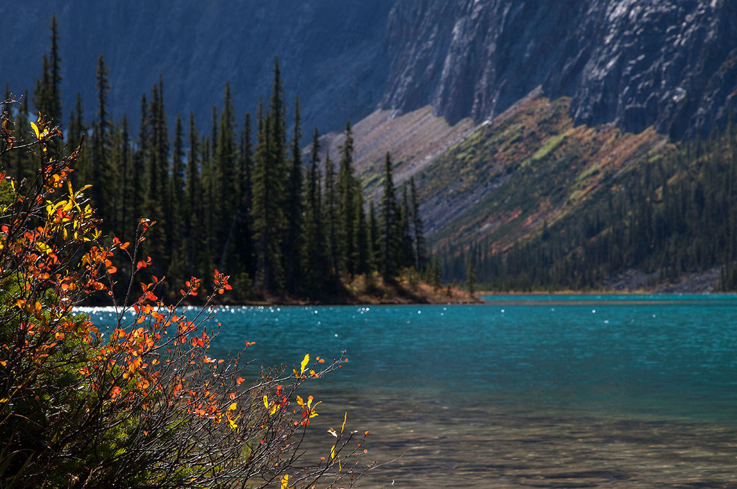 Beautiful turquoise Mountain lake in sunshine with red leaves, Japer National Park, Alberta, Canada, 1280x850px