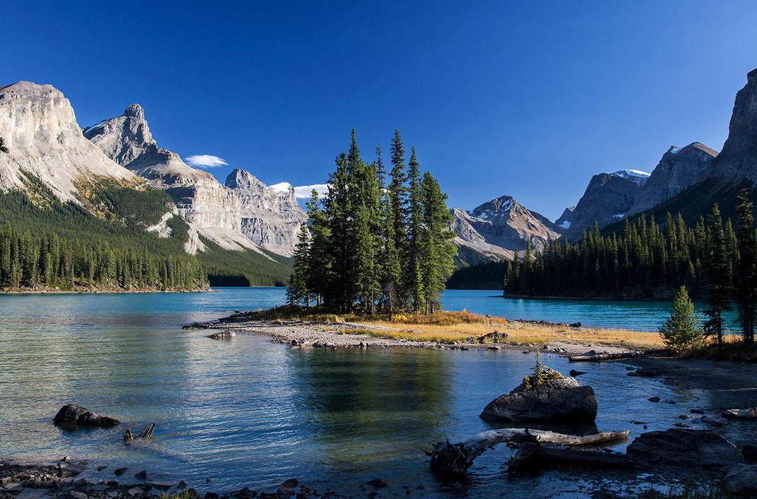 Beautiful island with needle tress surrounded by mountains at Maligne Lake, Japer National Park, Alberta, Canada, 1280x845px