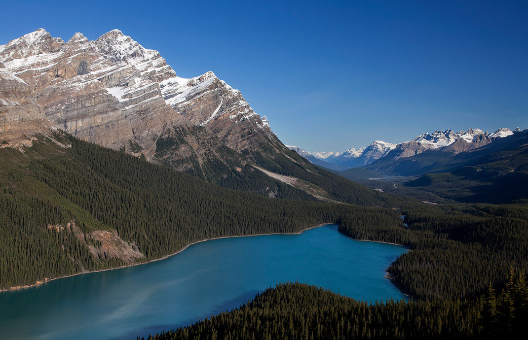 Beautiful Peyto lake with view to the Colombia Icefield and blue sky and mountains with snow, Banff National Park, Alberta, Canada, 1280x826px