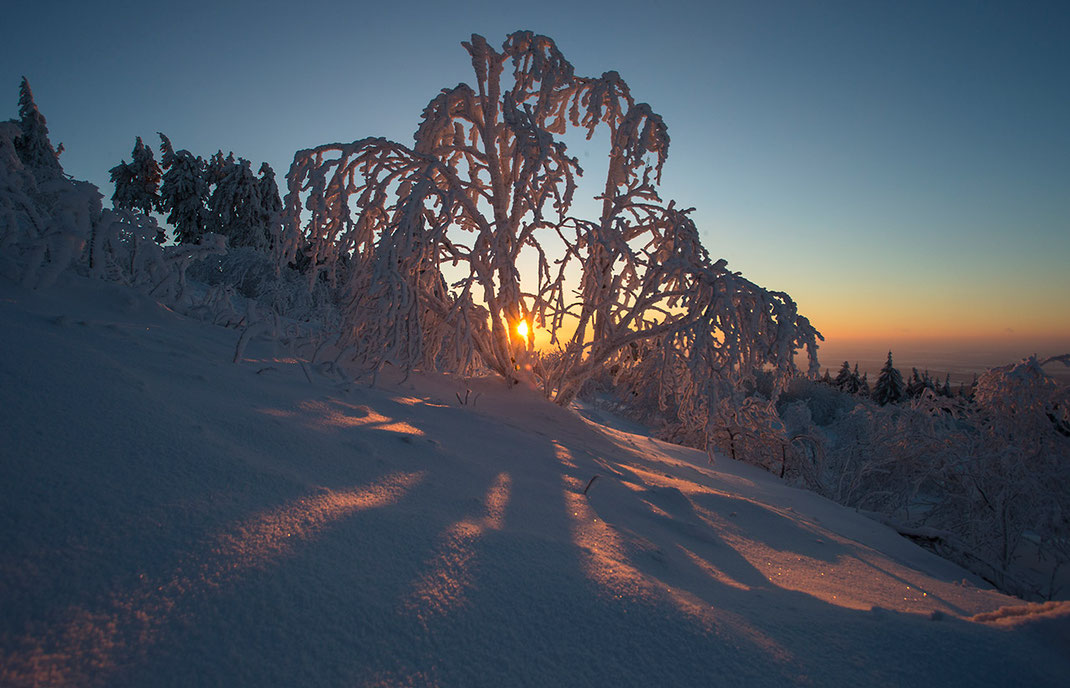 Beautiful orange sunset with frozen trees and deep snow in winter, Taunus mountains, Hessen, Germany