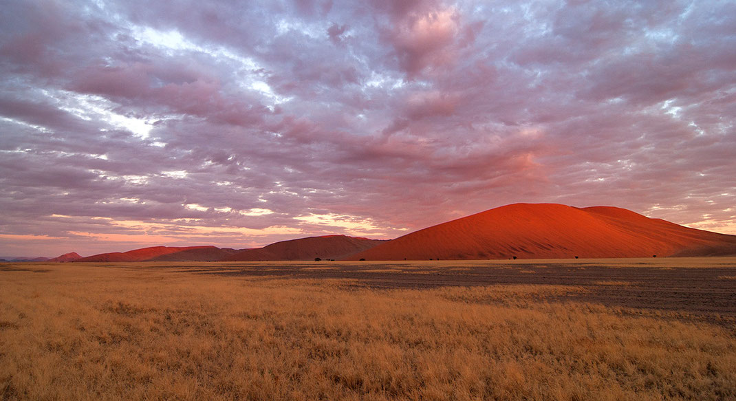 Red glowing Sossusvlei dunes at sunset, Namib Desert, Namib Naukluft Park, Namibia, 1280x697px
